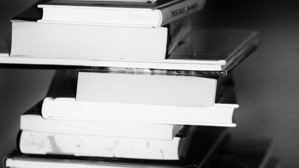 El artículo de revisión bibliográfica  Como son los artículos de revisión???